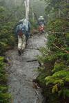 climbing the Adirondacks