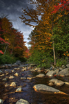 dark autumn creek photo