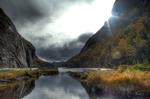 swamp landscape in HDR
